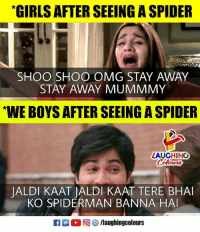 Girls, Omg, and Spider: GIRLS AFTER SEEING A SPIDER  SHOO SHOO OMG STAY AWAY  STAY AWAY MUMMMY  WE BOYS AFTER SEEING A SPIDER  LAUGHINO  JALDI KAAT JALDI KAAT TERE BHA  KO SPIDERMAN BANNA HA