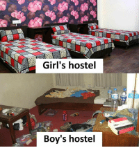 Girls, Memes, and Boys: Girl's hostel  Boy's hostel