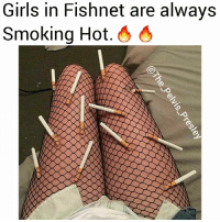 Girls, Memes, and Smoking: Girls in Fishnet are always  Smoking Hot. 6 4 This has been scientifically proven, don't @ me sweatie. 😎🔥 @the_pelvis_presley @the_pelvis_presley