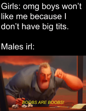Girls, Omg, and Tits: Girls: omg boys won't  like me because I  don't have big tits.  Males irl:  BOOBS ARE BOOBS! tiddies