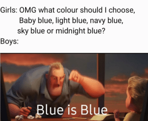 Blue is Blue: Girls: OMG what colour should I choose,  Baby blue, light blue, navy blue,  sky blue or midnight blue?  Boys:  Blue is Blue Blue is Blue