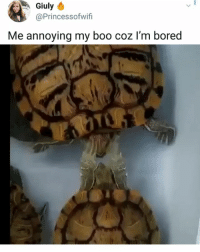 Boo, Bored, and Memes: Giuly  @Princessofwifi  Me annoying my boo coz l'm bored WTF 😂