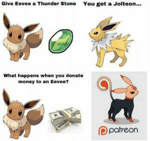 srsfunny:  This one is rare.: Give Eevee a Thunder Stone  You get a Jolteon...  What happens when you donate  money to an Eevee?  Ppatreon srsfunny:  This one is rare.