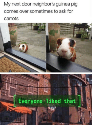 Give him some carrots by inslatafresca_ MORE MEMES: Give him some carrots by inslatafresca_ MORE MEMES