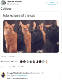 Internet, Eclipse, and Cat: Give Me Internet  Follow )  GiveMelnternet  Catlipse  total eclipse of the cat  4:40 PM-2 Feb 2018  362 Retweets 688 Likes  91  t0 362 688  AverageWhiteThicChickenStick @DubStepitles 18h  Replying to @GiveMelnternet  No it's a worldwide Cataklysm  AWP