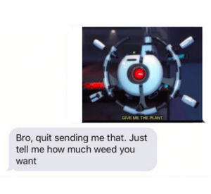 Dank, Memes, and Target: GIVE ME THE PLANT  Bro, quit sending me that. Just  tell me how much weed you  want The plant by benjjisans MORE MEMES