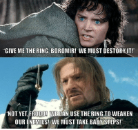 "boromir: ""GIVE ME THE RING, BOROMIR! WE MUST DESTORY IT!""  ""NOT YET FRODO! WECAN USE THE RING TO WEAKEN  OUR ENEMIES! WE MUST TAKE BABY STEPS!"""