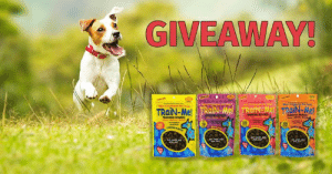 ⭐️Win a Prize Pack of Crazy Dog Mini Train-Me! Treats⭐️ We're teaming up with Crazy Dog this July! One lucky winner will receive a prize pack. 🐶  The prize pack includes:      Mini Bacon 4 oz.     Mini Beef 4 oz.     Mini Chicken 4 oz.     Mini Salmon Treats 4 oz.  To enter, leave a comment on this post with a picture of your dog being a good boy/girl!  Get creative, this contest ends 7/25/2019. Good luck to you all!  #CrazyDog #TrainingTreats #Giveaway #DogTraining #CrazyDogSummer: GIVEAWAY!  M Celerias Per frast  wini 19Celries Per r  TRaiN-Mel TRaiN-Me! TRaiN-Me TRaiN-Me  RANING RESRD  SANING REWAR  TRAINING REWARD  200  200  weree see ⭐️Win a Prize Pack of Crazy Dog Mini Train-Me! Treats⭐️ We're teaming up with Crazy Dog this July! One lucky winner will receive a prize pack. 🐶  The prize pack includes:      Mini Bacon 4 oz.     Mini Beef 4 oz.     Mini Chicken 4 oz.     Mini Salmon Treats 4 oz.  To enter, leave a comment on this post with a picture of your dog being a good boy/girl!  Get creative, this contest ends 7/25/2019. Good luck to you all!  #CrazyDog #TrainingTreats #Giveaway #DogTraining #CrazyDogSummer