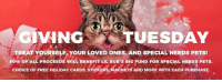 Memes, Aspca, and 🤖: GIVING  TUESDAY  TREAT YOURSELF YOUR LOVED ONES, AND SPECIAL NEEDS PETS!  50% oF ALL PROCEEDs WILL BENEFIT LIL BUB,s BIG FUND FOR SPECIALNEEDs PETs  CHOICE OF FREE HOLIDAY CARDS, STICKERS MAGNETS AND MORE WITH EACH PURCHASE Today is Giving Tuesday. You can help BUB help special needs pets by either donating directly to Lil BUB's Big FUND at www.aspca.org/lilbub or you can still get some holiday shopping done at www.lilbub.com/store and we'll donate 50% of proceeds (plus you get a free gift for yourself with every purchase). #goodjobbub