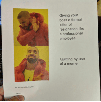 Fuck yes @whatdoyoumeme: Giving your  boss a formal  letter of  resignation like  a professional  employee  Quitting by use  of a meme  My last day will be July 31st  Thanks Fuck yes @whatdoyoumeme
