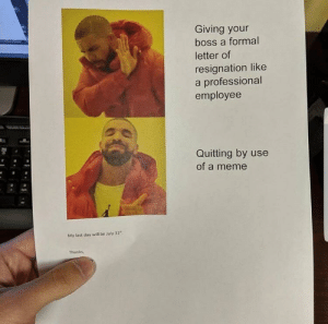 "resignation: Giving your  boss a formal  letter of  resignation like  a professional  employee  Quitting by use  of a meme  My last day will be July 31""  Thanks,"