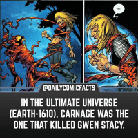 Memes, Earth, and Heroes: Gkt!  CaDAILYCOMICFACTS  IN THE ULTIMATE UNIVERSE  (EARTH-1610), CARNAGE WAS THE  ONE THAT KILLED GWEN STACY Marvel just hates Gwen. • dccomics detectivecomics comics dccomicheroes dccomicvillains hero villain heroes villains justiceleague unitethe7 dccomicstudios dccu dccomicfacts dailycomics comic comicfacts dailycomicfacts spiderman