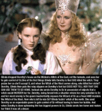 Pawned: Glinda dropped Dorothy's house on the Wicked a Witch of the East, not the tonado, and uses her  to gain controf of Oz.One of the first things Glinda tells Dorothy is that SHE killed the witch. They  praise her so she'll accept it, and when the Witch of the West comes along, who killed her sister?  Dorothy. Glinda then puts the ruby slippers on Dorothy's feet but DOES NOT TELL HER THAT SHE  CAN USE THEM TO GO HOME. Instead she sends Dorothy to 0z in possession of objects that a  witch would MURDER her for. Dorothy, being forced into a situation where her only salvation is 0z  and her worst enemy is the queen inadvertently exposes the Wizard of 0z as a fraud AND murders  the Witch of the West. Now who's left to rule 0z? Glinda fuckin' witch of the north. She used  Dorothy as an expendable pawn to gain control of Oz without having to leave her bubble. And  when Dorothy is done upheaving the two biggest powers in Oz, Glinda sends her home and makes  her think it was all a dream