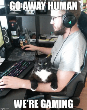 No girls allowed.: GO AWAY HUMAN  m  WE'RE GAMING  imgflip.com No girls allowed.
