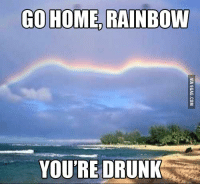 Rainbow: GO HOME RAINBOW  YOU'RE DRUNK