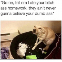 """Ass, Bad, and Bitch: """"Go on, tell em l ate your bitch  ass homework, they ain't never  gunna believe your dumb ass"""" Lmao😂follow @codmemenation (me) for more! Like for good luck👊 ignore for bad luck😩 Tag a friend😎👍 ➖➖➖➖➖➖➖➖➖➖➖➖➖➖➖➖➖✔Credit:unknown DM for credit Follow my backup accounts @cod_meme_nation & @animal.angel ➖➖➖➖➖➖➖➖➖➖➖➖➖➖➖ ⏬ Hashtags (ignore) ⏬ cod game gaming gamer meme drake dog dogs cat cats trump 2017 battlefield battlefield1 gta gtav gta5 gtavonline comedy savage humor gamers Relatable Hilarious KimKardashian KylieJenner Squad Crazy Omg Epic"""
