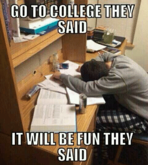 studentlifeproblems:  If you are a student Follow @studentlifeproblems: GO TO COLLEGE THEY  SAID  IT WILL BE FUN THEV  SAID studentlifeproblems:  If you are a student Follow @studentlifeproblems