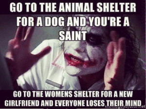 Well, its true: GO TO THE ANIMAL SHELTER  FOR A DOG AND YOU'RE A  SAINT  GO TO THE WOMENS SHELTER FOR A NEW  GIRLFRIEND AND EVERYONE LOSES THEIR MIND Well, its true