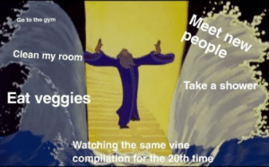 Dank, Gym, and Instagram: Go to the gym  Clean my room  Take a shower  Eat veggies  Watching the same vine  compilation for the 20tb tim By MyLighterisBetter