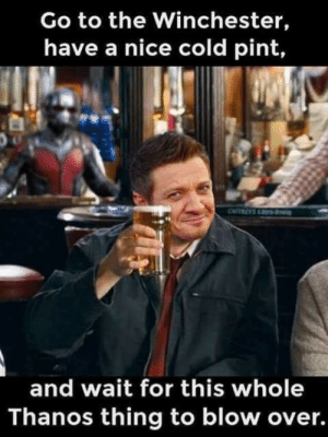 Marvel, Pint, and Cold: Go to the Winchester,  have a nice cold pint,  and wait for this whole  Thanos thing to blow over. The Marvel/Shaun of the dead crossover you didn't know you needed.
