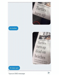 Memes, Turn Up, and Beach: Go turtles  Oh dear god  Type an SMS message  SATURDAY, 2016  Turtles  turn up  Turtles  turn up  dead on  beaches  Green Turtles  recently Sea BY PAMEI a  found decease Please save the turtles @fuckitimarobot