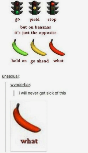 Sick, Never, and Bananas: go yield stop  but on bananas  it's just the opposite  hold on go ahead what  unsexual:  wvnderbar:  i will never get sick of this  what What