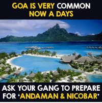 "Memes, Gang, and Common: GOA IS VERY COMMON  NOW A DAYS  ASK YOUR GANG TO PREPARE  FOR ANDAMAN & NICOBAR"" 😍😍😍"