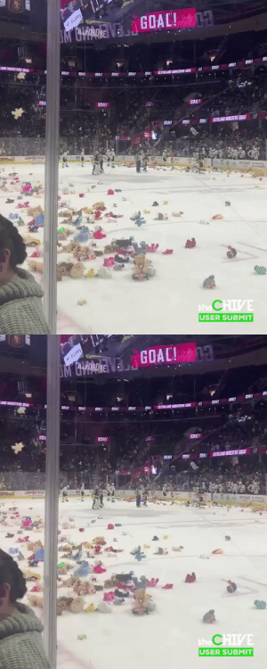 An overwhelming teddy bear donation at a Cleveland Monsters game. Embrace the Christmas cheer https://t.co/GHHhm9lOey: GOAL! 13  EA  - CLIFFS  MORDVE  JO MONSTERS COAL  RELAD MONSTERS COAL  GDA  GOALI  GOAL  CLEVELAND MONSTERS EIALI  SOAL GRAL  GOALI  ROCKET P  the CHIVE  USER SUBMIT   GOAL!1  * CLIFFS  M ORDVE  AND MSTERE BIAL  GOALI  SON!  SAL  GOALI  CVELA MONETERS SOAL  SDA  GOALI  GOAL  CEELAND NNSTERS GALI  SOAL  GEAL  SRALL  ROCKET es  the CHIVE  USER SUBMIT An overwhelming teddy bear donation at a Cleveland Monsters game. Embrace the Christmas cheer https://t.co/GHHhm9lOey