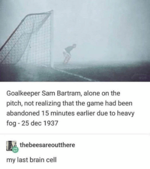 That's a textbook fail right there. #Fail #Tumblr #Memes #Sport #OutdoorSport #Soccer: Goalkeeper Sam Bartram, alone on the  pitch, not realizing that the game had been  abandoned 15 minutes earlier due to heavy  fog 25 dec 1937  thebeesareoutthere  my last brain cell That's a textbook fail right there. #Fail #Tumblr #Memes #Sport #OutdoorSport #Soccer