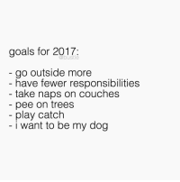 new year new me: goals for 2017  go outside more  have fewer responsibilities  take naps on couches  pee on trees  play catch  i want to be my dog new year new me