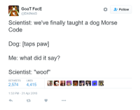 """Goat, Humans of Tumblr, and Taps: GoaT FacE  @Endhoos  Follow  Scientist: we've finally taught a dog Morse  Code  Dog: [taps paw]  Me: what did it say?  Scientist: """"woof""""  RETWEETS  LIKES  2,574 4,415  @民鵯..  :53 PM-21 Apr 2016"""