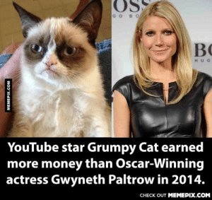 I'm gonna go look for this cat.omg-humor.tumblr.com: GOBO  BC  HUG  YouTube star Grumpy Cat earned  more money than Oscar-Winning  actress Gwyneth Paltrow in 2014.  CНЕCK OUT MEМЕРIХ.COM  MEMEPIX.COM I'm gonna go look for this cat.omg-humor.tumblr.com
