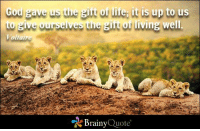 God gave us the gift of life; it is up to us to give ourselves the gift of living well. - Voltaire https://www.brainyquote.com/quotes/authors/v/voltaire.html #brainyquote #QOTD #cub #life: God ave us the of life, it is up to us  to give ourselves the girt of living well.  Voltaire  Brainy  Quote God gave us the gift of life; it is up to us to give ourselves the gift of living well. - Voltaire https://www.brainyquote.com/quotes/authors/v/voltaire.html #brainyquote #QOTD #cub #life