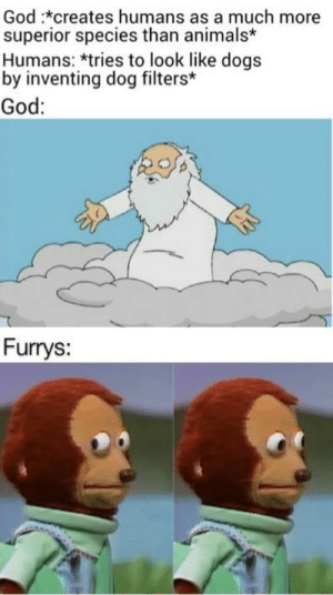 Is it furries or furrys?: God :*creates humans as a much more  superior species than animals*  Humans: *tries to look like dogs  by inventing dog filters*  God:  Furrys: Is it furries or furrys?