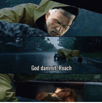 god dammit: God dammit, Roach  UNILAD