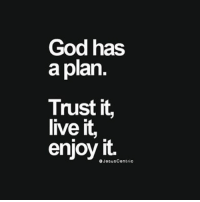 God, Memes, and Live: God has  a plan.  Trust it,  live it,  enjoy it.  OJocusContrio