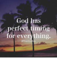 God, Memes, and Perfect Timing: God has  perfect timing  for everything  @TrustGodbro