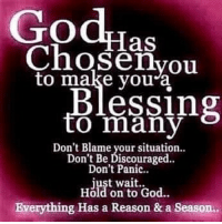 I was to chosen to inspire people all glory goes to the man in heaven.🙏🙏 RepostBy @a_women_of_god: (via InstaRepost @AppsKottage): God,Ins  Chosen to make you a  essing  to many  Don't Blame your situation..  Don't Be Discouraged.  Don't Panic.  just wait.  Hold on to God.  Everything Has a Reason & a Season, I was to chosen to inspire people all glory goes to the man in heaven.🙏🙏 RepostBy @a_women_of_god: (via InstaRepost @AppsKottage)