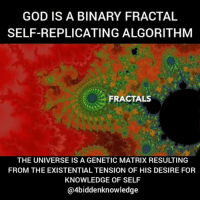 "Here is my effort to explain the basics of fractals. This is the coding that the prime creator used to create everything that we perceive in this universe. We are living in a created fractal holographic matrix. All Fractals start with a process called iteration. An operation is repeated over and over again. Often a very simple formula gives rise to an incredibly complicated-appearing image. Most people who initially feel put off by looking at this passed high school algebra and did things that were much more difficult than this. You can start with the MandelbrotFormula: z=z^2 +c (z=z squared + c). This is really: z(new) = z(old) ^2+ c. For the Mandelbrot equation, z is set at the beginning and most often is (0,0). The c corresponds to the pixel- picture the computer screen with an x-axis horizontally and a y- axis vertically. So a point on the x-axis would be (2,0) and a point on the y-axis would be (0,2) and a point in the lower left would be (-2-,2). (The second number is actually multiplied by i, the square root of minus 1- more on this later.) (like very later when someone else is doing the writing) So to see what color a particular pixel turns out, you put it into the equation z= z^2 + c z(new) = z(old) ^2 + c. Start with the point (2,0) on the x axis. The second number is multiplied by i, the square root of minus one, so this number is 2+ 0i= 2. In the Mandelbrot equation, the z is set at the beginning and the pixel is going in at the c value. For z=0 and c=pixel=(2,0) z= 0^2 +2= 2 Then you put the 2 in for the old z and get a new new z- this is the iteration part. z= 2^2 +2=6 z=6^2+2=38 etc. Try another pixel- (-0.2,0.2) z=0^2 + (-0.2 +0.2i)= -0.2 + 0.2i z=(-0.2 + 0.2i)^2 +(-0.2 +0.2i) etc. The number of times you plug it into the formula is called the ""maximum iterations"" or maxiter- one of the things you can vary in the fractal program. 4biddenknowledge I saw an image post on @awakenedconsciouscollective that inspired me to make this post.: GOD IS A BINARY FRACTAL  SELF-REPLICATING ALGORITHM  FRACTALS  THE UNIVERSE IS A GENETIC MATRIX RESULTING  FROM THE EXISTENTIAL TENSION OF HIS DESIRE FOR  KNOWLEDGE OF SELF  @4biddenknowledge Here is my effort to explain the basics of fractals. This is the coding that the prime creator used to create everything that we perceive in this universe. We are living in a created fractal holographic matrix. All Fractals start with a process called iteration. An operation is repeated over and over again. Often a very simple formula gives rise to an incredibly complicated-appearing image. Most people who initially feel put off by looking at this passed high school algebra and did things that were much more difficult than this. You can start with the MandelbrotFormula: z=z^2 +c (z=z squared + c). This is really: z(new) = z(old) ^2+ c. For the Mandelbrot equation, z is set at the beginning and most often is (0,0). The c corresponds to the pixel- picture the computer screen with an x-axis horizontally and a y- axis vertically. So a point on the x-axis would be (2,0) and a point on the y-axis would be (0,2) and a point in the lower left would be (-2-,2). (The second number is actually multiplied by i, the square root of minus 1- more on this later.) (like very later when someone else is doing the writing) So to see what color a particular pixel turns out, you put it into the equation z= z^2 + c z(new) = z(old) ^2 + c. Start with the point (2,0) on the x axis. The second number is multiplied by i, the square root of minus one, so this number is 2+ 0i= 2. In the Mandelbrot equation, the z is set at the beginning and the pixel is going in at the c value. For z=0 and c=pixel=(2,0) z= 0^2 +2= 2 Then you put the 2 in for the old z and get a new new z- this is the iteration part. z= 2^2 +2=6 z=6^2+2=38 etc. Try another pixel- (-0.2,0.2) z=0^2 + (-0.2 +0.2i)= -0.2 + 0.2i z=(-0.2 + 0.2i)^2 +(-0.2 +0.2i) etc. The number of times you plug it into the formula is called the ""maximum iterations"" or maxiter- one of the things you can vary in the fractal program. 4biddenknowledge I saw an image post on @awakenedconsciouscollective that inspired me to make this post."