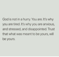 Disappointed, God, and Why: God is not in a hurry. You are. It's why  you are tired. It's why you are anxious,  and stressed, and disappointed. Trust  that what was meant to be yours, will  be yours.