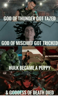 : GOD OF THUNDER GOT TAZED  GOD OF MISCHIEF GOT TRICKED  HULK BECAME A PUPPY  & GODDESS OF DEATH DIED