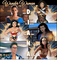 Memes, Formation, and Gal Gadot: GOD  PRI INCESS  ZON  AM  SUPERHERO  RRIOR  AWOND Film • Animation • Television A legend in all media formats and we owe it all to @gal_gadot, @susaneisenberg21 and @reallyndacarter for sharing their talents with the world. Thank you!
