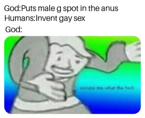 me irl: God:Puts male g spot in the anus  Humans:Invent gay sex  God:  excuse me what the fuck me irl