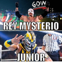 If a non wrestling fan sees a masked wrestler they'll think it's Rey prowrestling professionalwrestling wwe wwenxt wweraw wweuniverse wweuniversalchampionship wwesuperstars wwenetwork wwememes wwefunny wwefans wwenews wwepayback wweworldheavyweightchampion wwewrestling wrestler wrestlers wrestling wrestlingmemes johncena jindermahal ajstyles worldwrestlingfederation worldwrestlingentertainment: GOD  REY  MYSTERIO  JUNIOR If a non wrestling fan sees a masked wrestler they'll think it's Rey prowrestling professionalwrestling wwe wwenxt wweraw wweuniverse wweuniversalchampionship wwesuperstars wwenetwork wwememes wwefunny wwefans wwenews wwepayback wweworldheavyweightchampion wwewrestling wrestler wrestlers wrestling wrestlingmemes johncena jindermahal ajstyles worldwrestlingfederation worldwrestlingentertainment
