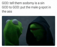 😂😂😂: GOD: tell them sodomy is a sin  GOD to GOD: put the male g-spot in  the ass 😂😂😂