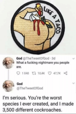 Dank, Fucking, and God: God @TheTweetOfGod 3d  What a fucking nightmare you people  are.  47.7K  God  @TheTweetOfGod  I'm serious. You're the worst  species l ever created, and I made  3,500 different cockroaches. Hes mad by iambuddyretard MORE MEMES