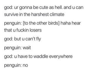 God creating penguins: god: ur gonna be cute as hell. and u can  survive in the harshest climate  penguin: [to the other birds] haha hear  that u fuckin losers  god: but u can't fly  penguin: wait  god: u have to waddle everywhere  penguin: no God creating penguins