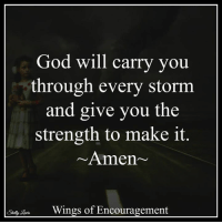 <3 Wings of Encouragement  ➡ Get daily positive quotes in email ✉ www.diq.email ⬅: God will carry you  through every storm  and give you the  strength to make it  Amen  Wings of Encouragement  Shelly <3 Wings of Encouragement  ➡ Get daily positive quotes in email ✉ www.diq.email ⬅