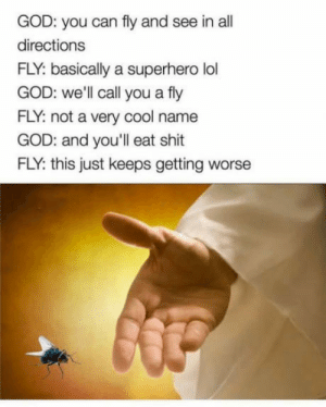 God, Lol, and Shit: GOD: you can fly and see in all  directions  FLY: basically a superhero lol  GOD: well call you a fly  FLY: not a very cool name  GOD: and you'll eat shit  FLY: this just keeps getting worse awesomacious:  The superhero we deserve