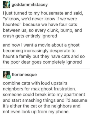 """Cats, Desperate, and Family: goddammitstacey  I just turned to my housemate and said,  """"y'know, we'd never know if we were  haunted"""" because we have four cats  between us, so every clunk, bump, and  crash gets entirely ignored  and now I want a movie about a ghost  becoming increasingly desperate to  haunt a family but they have cats and so  the poor dear goes completely ignored  florianesque  combine cats with loud upstairs  neighbors for max ghost frustration.  someone could break into my apartment  and start smashing things and i'd assume  it's either the cat or the neighbors and  not even look up from my phone. The Haunting in Catnecticutt."""